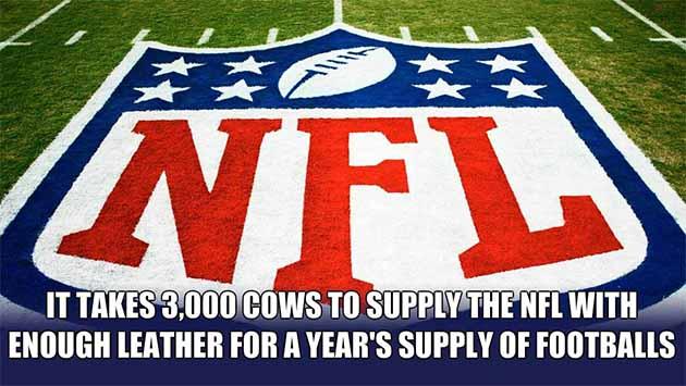 NFL Football leather